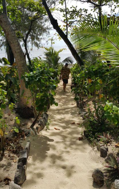 Beachcomber island deals