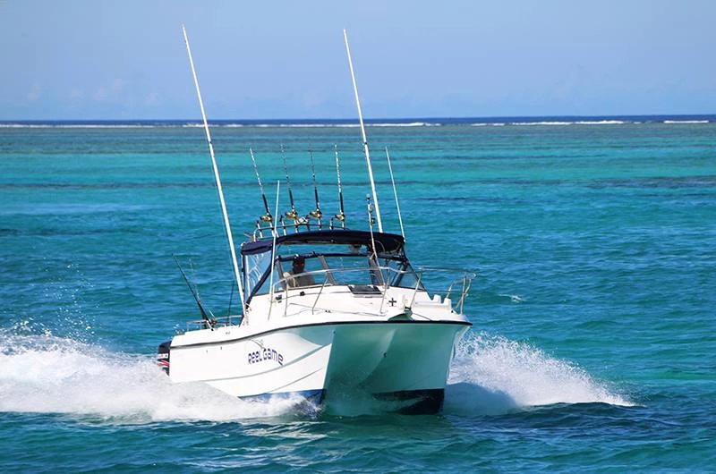 4 hour Boat Charter Snorkelling Trip to Malamala Island up to 10 Guests