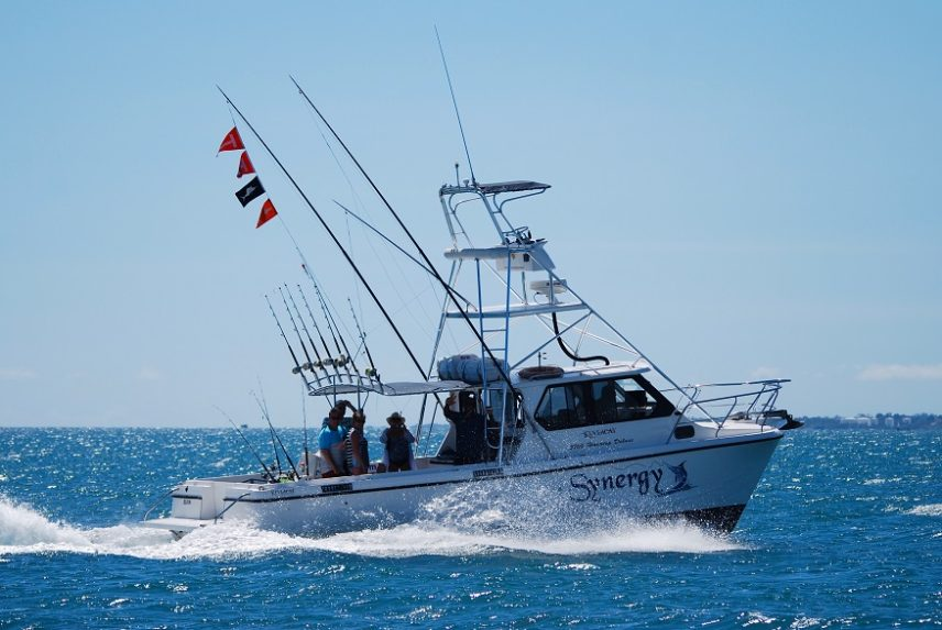 Synergy 7 Hour Fishing Boat Charter
